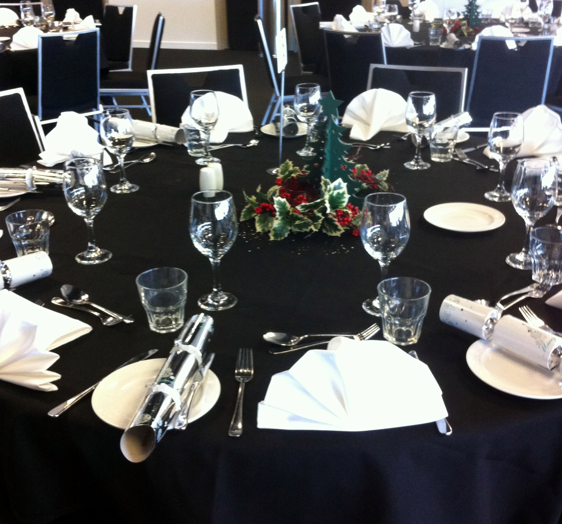 Staff Christmas Parties for small groups. Auckland, Combined staff christmas parties. Dinner theatre shows. Christmas dinner, show and dance. Staff Christmas party ideas. https://www.talentonline.co.nz/database/combined-staff-christmas-parties-auckland.html